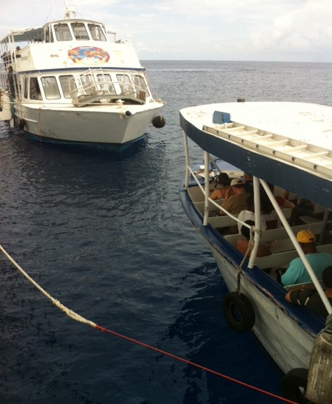 Riding Tender to Grand Cayman